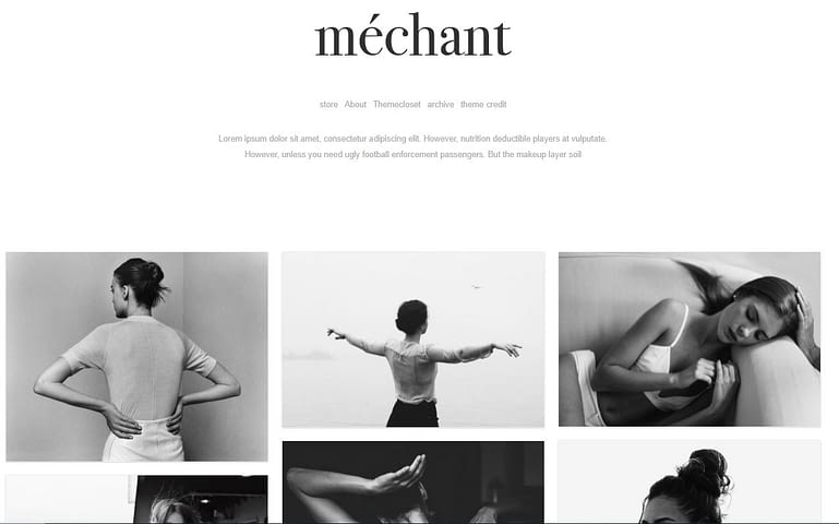 Tumblr Free Blog Theme