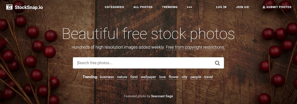 StockSnap.io - Webtopic
