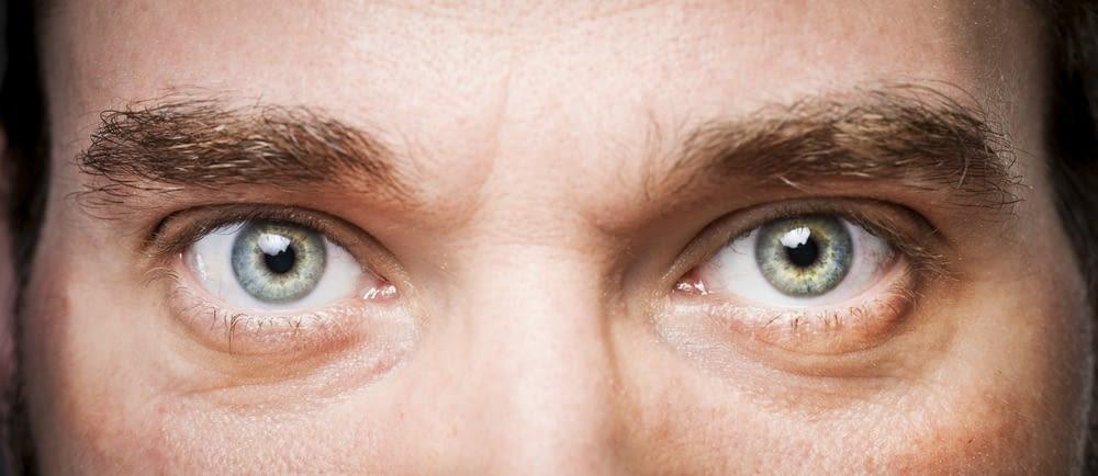 Eye to eye contact - Webtopic