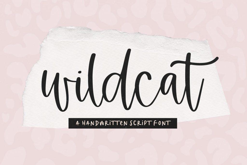 AnyConv.com  22. Wildcats Tattoo Font –