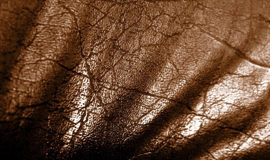 Dark brown leather Leather Textures