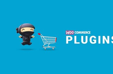 Top 10 Essential WooCommerce Plugin You Should Know