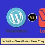 Laravel vs WordPress How They Differ
