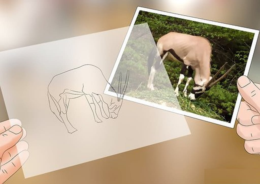 10. Tracing a photograph min