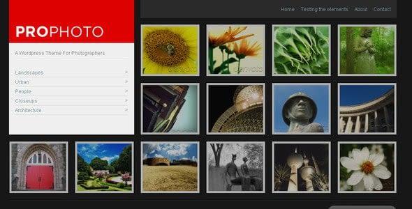 ProPhoto WordPress Theme