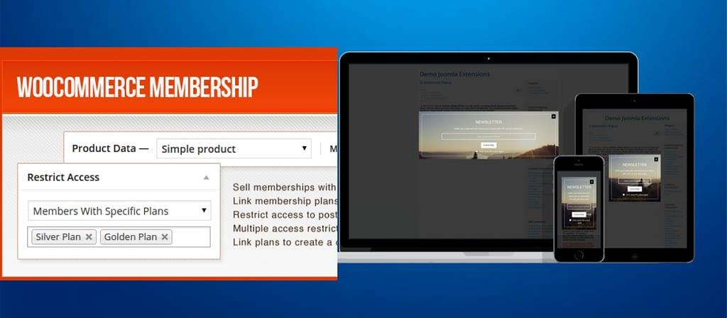 1st WooCommerce Memberships up